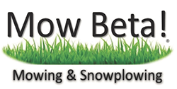 Mow Beta! Mowing & Snowplowing